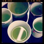 アサオチャは新茶サンプルのボツで